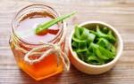 Рецепты и особенности приготовления настойки из алоэ меда и кагора