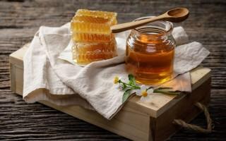 Лечебные свойства бархатного амурского меда