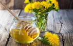 Осотовый мед и его полезные свойства