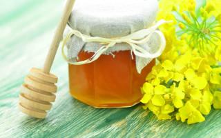Расповый мед не только для людей, но и для пчел