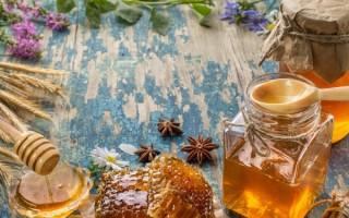 Опасность незрелого меда и отличительные особенности