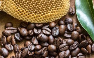 Можно ли пить кофе с добавлением меда