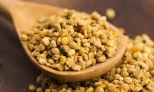 Уникальный состав, польза и вред цветочной пыльцы обножки