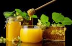 Мед натощак как эффективное лекарственное средство от многих болезней.