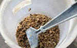 Профилактика и лечение болезней суставов пчелиным подмором