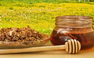 Применение прополисного масла и лучшие рецепты