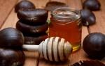 Элитный каштановый мед – универсальное лекарство от всех болезней