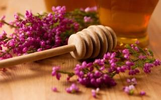 Происхождение и описание верескового меда