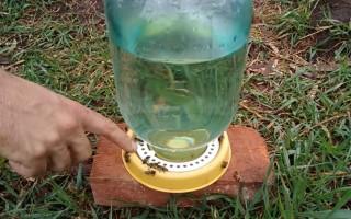 Изготовление поилок для пчел своими руками