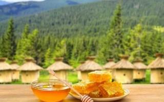 Полезные свойства разновидностей горного меда