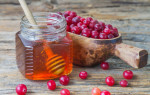 Эффективное сочетание клюквы с медом