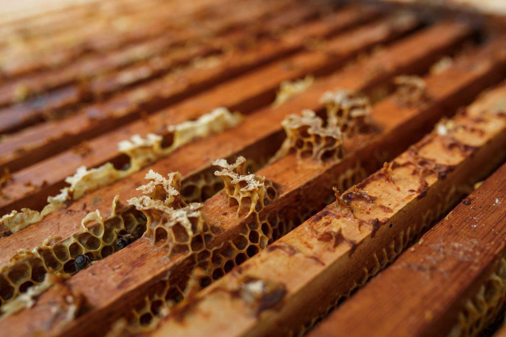 пчелорамки