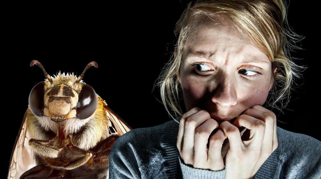 Апифобия  страх перед пчелами и осами