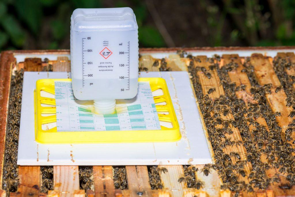 Муравьиная кислота для лечения пчел