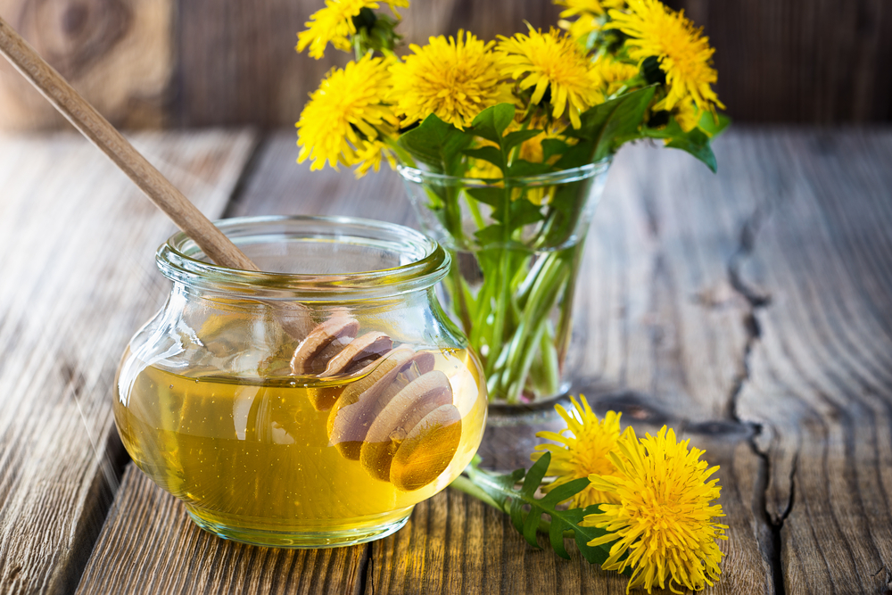 Чем полезен мед из одуванчиков