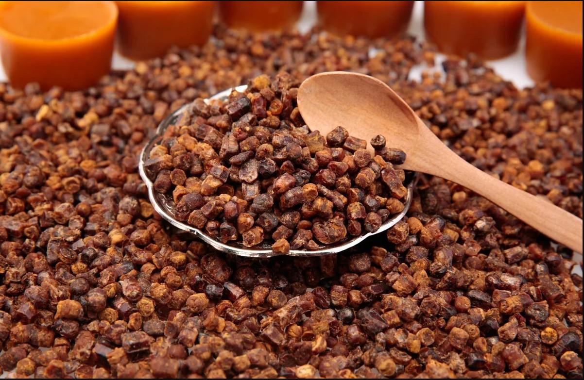 Как хранить пчелиную пергу в домашних условиях: сколько и как правильно сушить