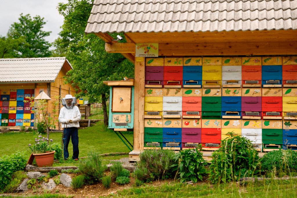 Пчелопавильон берендей: как сделать передвижную и кассетную пасеку для пчел самостоятельно